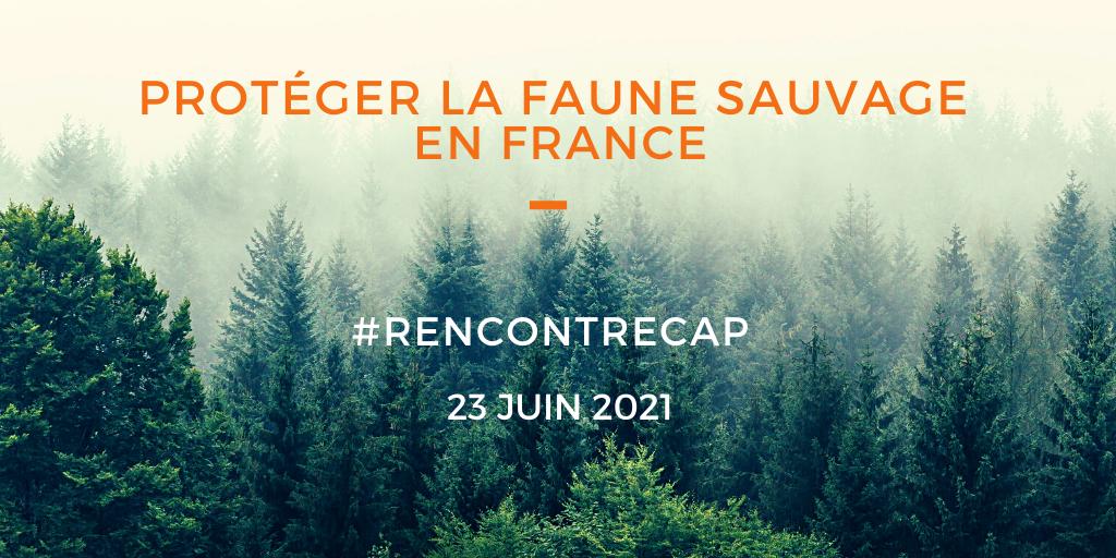 Rencontre CAP du 23 juin 2021